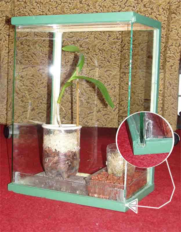 Парник своими руками для комнатных растений